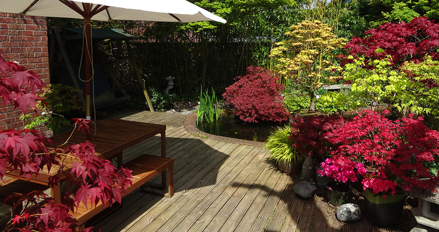jardineria02